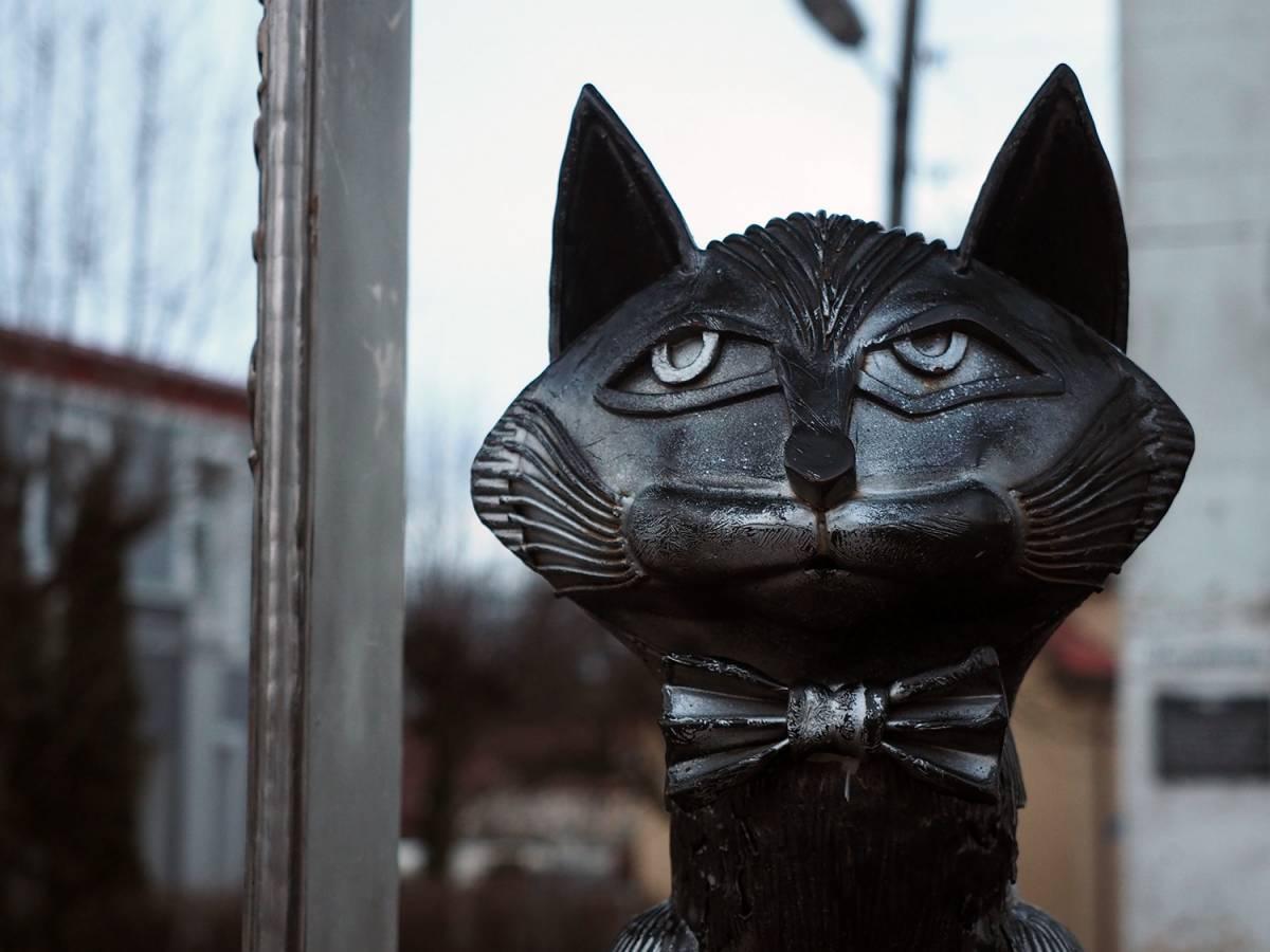 Памятник Зеленоградским котам — образец лучших практик по развитию городского пространства!